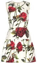 Dolce & Gabbana Floral-printed Brocade Dress