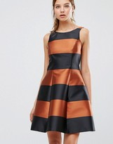 Coast Milliana Bronze Stripe Dress