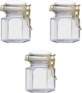 Global Amici Olivia Hermetic Preserving Spice Jar - Set of Three