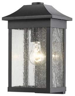 Morgan Artcraft Lighting SC13101 Single Light Outdoor Wall Sconce