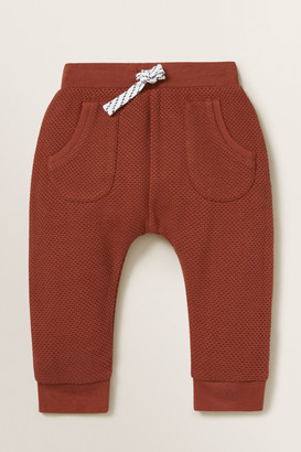 Seed Heritage Chenille Fox Trackpant
