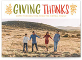 Minted Thanks Thanksgiving Cards