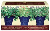 French Country Herb Trio (3-pc.) by Garden at Home