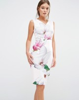 Ted Baker Aviah Bodycon Dress in Pink Magnolia Print