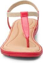 Thumbnail for your product : Børn Trinity T-Strap Sandal
