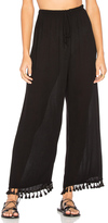 Velvet by Graham & Spencer Nevia Pant