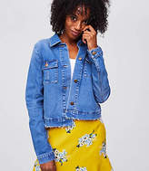 LOFT Petite Frayed Denim Swing Jacket
