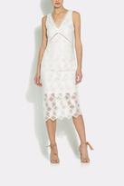 Shoshanna Hayworth Dress