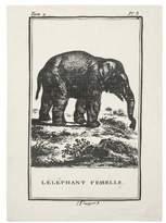 Thomas Paul Elephant Tea Towel
