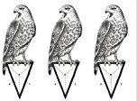 Set of 5 Waterproof Temporary Fake Tattoo Stickers Vintage Grey Geometric Pigeon Birds Design