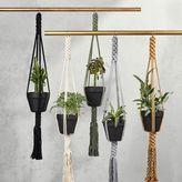 west elm Yerbamala Designs Plant Hangers - Filament