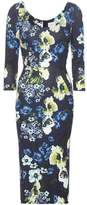 Erdem Tess printed dress