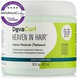DevaCurl Heaven In Hair Moisture Treatment, 16 Fluid Ounce