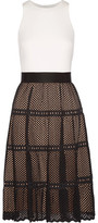 Catherine Deane Paneled Cotton-Blend Neoprene And Broderie Anglaise Midi Dress