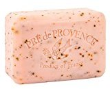 Pre de Provence Shea Butter Enriched Handmade French Soap Bar (250g) - Juicy Pomegranate