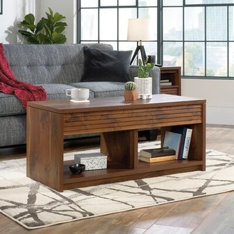 Millwood Pines Vesta Lift Top Floor Shelf Coffee Table with Storage
