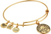 Alex and Ani Charity By Design - Power of Unity Bracelet Bracelet