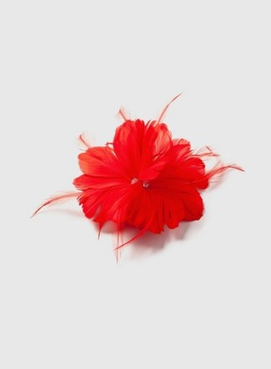 Dorothy Perkins Womens Red 2 Feather Clip Fascinator, Red
