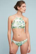 Shoshanna Banana Leaf Classic Swim Bikini Bikini Bottom