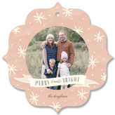 Minted Bright Spirits Holiday Ornament Cards