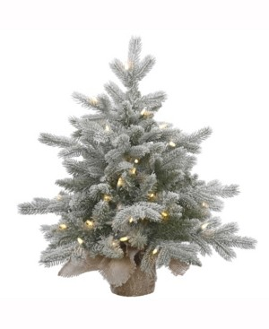 Vickerman 24 inch Frosted Sable Pine Artificial Christmas Tree With 50 Warm White Led Lights