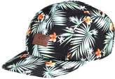 Vans Davis Cap Black Decay Palm
