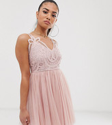 Asos DESIGN Petite Premium lace top tulle cami mini dress