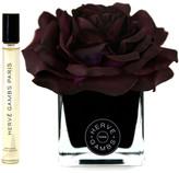 Fauve Herve Gambs - Plum Rose Diffuser - Ecorce 10ml