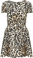 Animal Print Flippy Dress