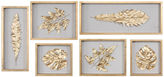 Asstd National Brand Leaves Shadow Box Wall Dcor (Set of 6)