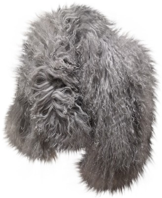 CHARLOTTE SIMONE Grey Shearling Scarves