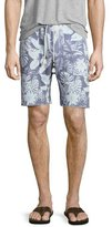 Sol Angeles Mystique Tropical-Print Saddle Shorts, Light Blue