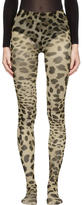 Dolce & Gabbana Multicolor Leopard Tights