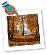 3dRose LLC qs_97784_4 Yves Creations Autumn - Autumn Forest - Quilt Squares