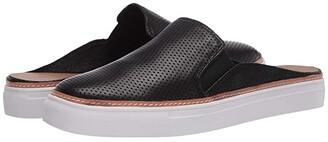 Aerosoles Niagara (Black Leather) Women's Shoes