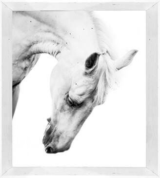 Cooper Black Aspen Photographic Print With Frame