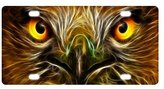 JIJIDA Eagle Face Eyes License Plate Novelty Tag