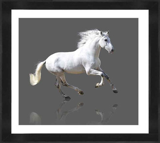Cooper Black Grey Gallop Photographic Print With Frame