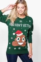Boohoo Daisy Poo Emoji Christmas Jumper bottle green