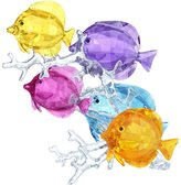 Swarovski Rainbow Fish Family Collectible Figurine
