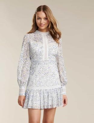 Ever New Maddison Trim Splice Dress