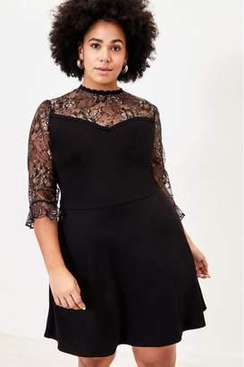 Oasis Womens Curve Black Lace Skater Dress - Black