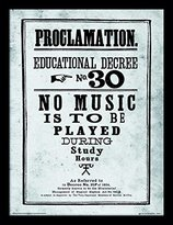 Harry Potter Proclamation No.30 Framed 30 x 40 Official Print - Overall Size: 36 x 46 cm (14 x 18 inches) Print Size: 30 x 40 cm