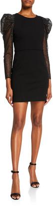 HANEY Fiona Embroidered Sleeve Mini Dress