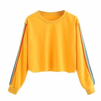 Starstreetcom Ladies Womens Girls Crop Hoodie Rainbow Color Block Striped Crop Top Sweatshirt Cropped Jumper Heavy Sweat Pullover Tops (Tag L(UK 10-12)
