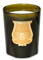 Cire Trudon Ernesto great candle 3kg - Leather & Tabaco scent