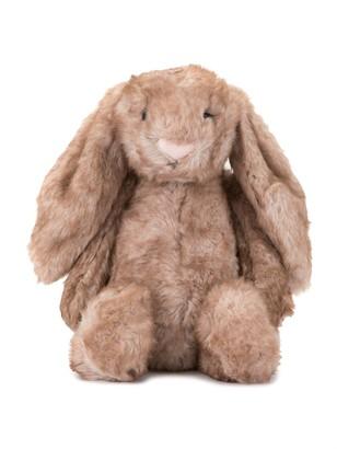 Jellycat Fluffy Bunny Toy