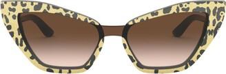 Dolce & Gabbana Acetate Cat Eye Sunglasses
