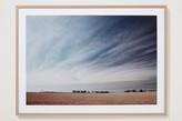 Sheridan Wheat Field Framed Wall Art