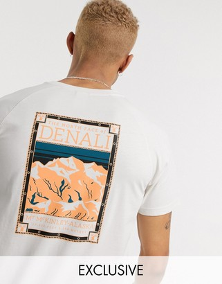 The North Face Faces t-shirt in cream Exclusive at ASOS